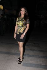 Krishika Lulla at Madhur Bhandarkar Bash on 30th Nov 2016 (76)_583fcaa34037a.JPG