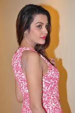 Deeksha Panth Photoshoot (113)_584117914d44b.jpg