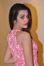 Deeksha Panth Photoshoot (118)_58411794472aa.jpg