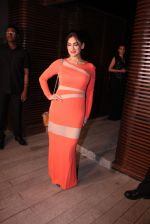 Lucky Morani at Estelle lounge launch in Mumbai on 1st Dec 2016 (119)_5842314baf737.JPG