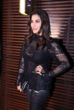 Sophie Chaudhary at Estelle lounge launch in Mumbai on 1st Dec 2016 (151)_5842322174e1b.JPG