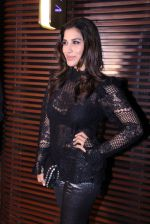 Sophie Chaudhary at Estelle lounge launch in Mumbai on 1st Dec 2016 (152)_584232220b26b.JPG