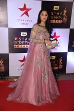 Bhumika Chawla at 22nd Star Screen Awards 2016 on 4th Dec 2016 (40)_584539113b4d4.JPG