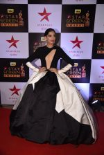 Sonam Kapoor at 22nd Star Screen Awards 2016 on 4th Dec 2016 (79)_584539abc81ad.JPG