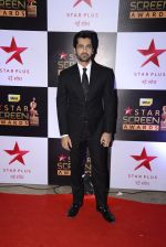 Arjan Bajwa at 22nd Star Screen Awards 2016 on 4th Dec 2016 (231)_58465bc45158f.JPG