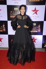 Gauhar Khan at 22nd Star Screen Awards 2016 on 4th Dec 2016 (190)_58465c606154c.JPG