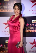 Nushrat Barucha at 22nd Star Screen Awards 2016 on 4th Dec 2016 (539)_58465cdd14a27.JPG