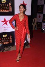 Pallavi Sharda at 22nd Star Screen Awards 2016 on 4th Dec 2016 (325)_58465d1d0bd2c.JPG
