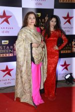 Salma Agha at 22nd Star Screen Awards 2016 on 4th Dec 2016 (93)_58465de7cc230.JPG