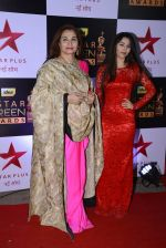 Salma Agha at 22nd Star Screen Awards 2016 on 4th Dec 2016 (94)_58465de8b1b1b.JPG