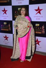 Salma Agha at 22nd Star Screen Awards 2016 on 4th Dec 2016 (97)_58465dee302d0.JPG