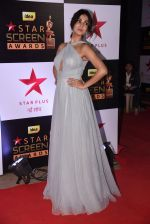 Sonal Chauhan at 22nd Star Screen Awards 2016 on 4th Dec 2016 (824)_58465e668717b.JPG
