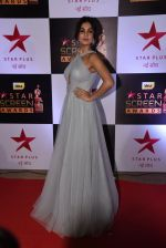 Sonal Chauhan at 22nd Star Screen Awards 2016 on 4th Dec 2016 (830)_58465e6a7ba3c.JPG