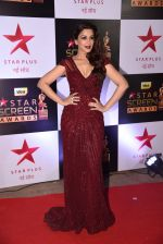 Sonali Bendre at 22nd Star Screen Awards 2016 on 4th Dec 2016 (986)_58465e7b414f6.JPG