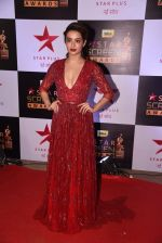 Surveen Chawla at 22nd Star Screen Awards 2016 on 4th Dec 2016 (783)_58465eb5684e2.JPG