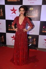 Surveen Chawla at 22nd Star Screen Awards 2016 on 4th Dec 2016 (782)_58465eb4a03f9.JPG