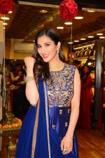 Sophie Choudhary visit showroom Varti Jewels on 10th Dec 2016 (42)_584d67719ce3e.JPG
