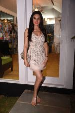 Aanchal Kumar at the launch of Shane Falguni Peacock store launch at Marbella Resort in Goa on 12th Dec 2016 (124)_584fc0040f312.JPG