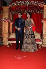 Aman Verma_s wedding reception on 14th Dec 2016 (80)_5852590b8fdf0.JPG