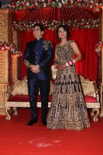Aman Verma_s wedding reception on 14th Dec 2016 (85)_5852590ee95b5.JPG