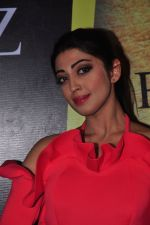 Praneetha at South Scope Lifestyle Awards (106)_5853a9ed1fe55.JPG