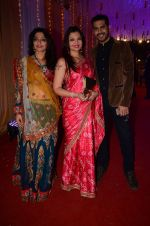 Deepshikha Nagpal at Photographer Munna S wedding reception on 18th Dec 2016 (144)_5857923c6da8f.JPG
