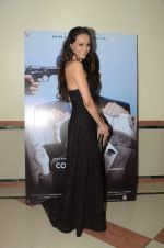 Dipannita Sharma at Sunil Grover_s film Coffe with D promotions on 17th Dec 2016 (12)_5857870e1c70b.JPG