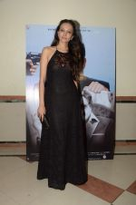 Dipannita Sharma at Sunil Grover_s film Coffe with D promotions on 17th Dec 2016 (5)_58578706f16cf.JPG