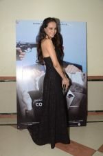 Dipannita Sharma at Sunil Grover_s film Coffe with D promotions on 17th Dec 2016 (11)_5857870d27ca5.JPG