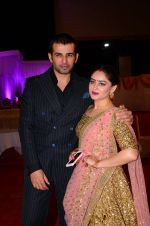 Mahi Vij, Jay Bhanushali at Photographer Munna S wedding reception on 18th Dec 2016 (219)_5857925d730cc.JPG