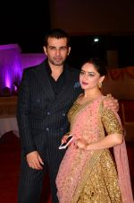 Mahi Vij, Jay Bhanushali at Photographer Munna S wedding reception on 18th Dec 2016 (220)_58579273329cd.JPG