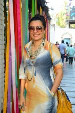 Mini Mathur at Urban women event Festivelle on 17th Dec 2016 (58)_5857879b0b540.JPG