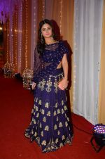 Rashmi Desai at Photographer Munna S wedding reception on 18th Dec 2016 (185)_5857928551e76.JPG