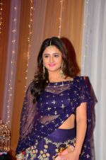 Rashmi Desai at Photographer Munna S wedding reception on 18th Dec 2016 (190)_5857928a3ef39.JPG