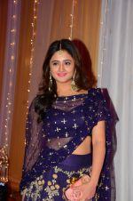 Rashmi Desai at Photographer Munna S wedding reception on 18th Dec 2016 (191)_5857928b0ec2d.JPG