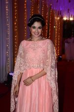 Yuvika Chaudhary at Photographer Munna S wedding reception on 18th Dec 2016 (135)_585792cd603bb.JPG