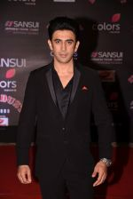 Amit Sadh at 14th Sansui COLORS Stardust Awards on 19th Dec 2016 (28)_5858d426a558b.JPG
