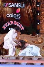 Amitabh Bachchan and Aishwarya Rai Bachchan at the Sansui COLORS Stardust Awards (14)_5858cf3db8d4d.JPG