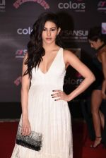 Amyra Dastur at 14th Sansui COLORS Stardust Awards on 19th Dec 2016 (46)_5858d45f12fd3.JPG