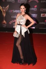Evelyn Sharma at 14th Sansui COLORS Stardust Awards on 19th Dec 2016 (36)_5858d48cf3fa3.JPG