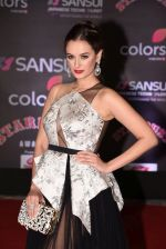 Evelyn Sharma at 14th Sansui COLORS Stardust Awards on 19th Dec 2016 (34)_5858d48b95cbf.JPG