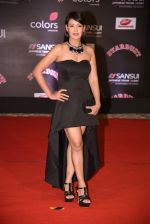 Preeti Jhangiani at 14th Sansui COLORS Stardust Awards on 19th Dec 2016 (17)_5858cc79c8c02.JPG