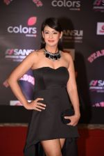 Preeti Jhangiani at 14th Sansui COLORS Stardust Awards on 19th Dec 2016 (18)_5858cc7a8907f.JPG