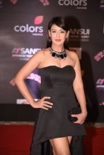 Preeti Jhangiani at 14th Sansui COLORS Stardust Awards on 19th Dec 2016 (19)_5858cc7b42713.JPG