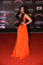 Richa Chadda at 14th Sansui COLORS Stardust Awards on 19th Dec 2016 (17)_5858d562c60a6.JPG