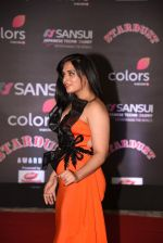 Richa Chadda at 14th Sansui COLORS Stardust Awards on 19th Dec 2016 (18)_5858d56364375.JPG