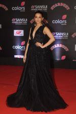 Surveen Chawla at Sansui COLORS Stardust Awards_5858d121b2d0c.JPG