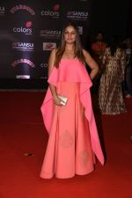 Tejaswini Kolhapure at 14th Sansui COLORS Stardust Awards on 19th Dec 2016 (76)_5858d5e19a87b.JPG