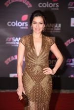 Waluscha de Sousa at 14th Sansui COLORS Stardust Awards on 19th Dec 2016 (32)_5858cc9d396f2.JPG