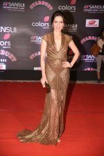 Waluscha de Sousa at 14th Sansui COLORS Stardust Awards on 19th Dec 2016 (33)_5858cc9dd2e5f.JPG
